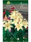Лилия Айвори Пикси (Lilium asiatic pot Ivory Pixie)