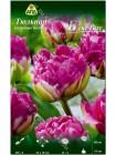 Тюльпан Блю Вау (Tulipa Blue Wow)