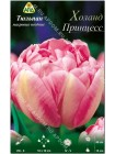 Тюльпан Холанд Принцесс (Tulipa Holland Princess)