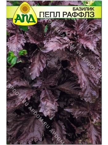 Базилик Пепл Раффлз (Ocimum basilicum L.)