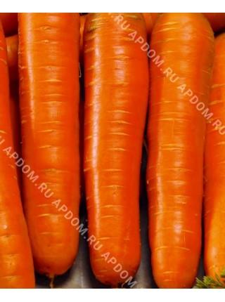 Морковь Гелакси