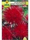 Астра китайская Джант Рей красный (Callistephus chinensis)