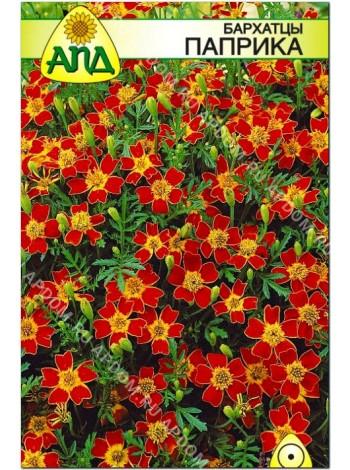 Бархатцы Паприка (Tagetes tenuifolia)
