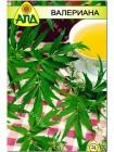 Валерьяна (Valeriana officinalis)