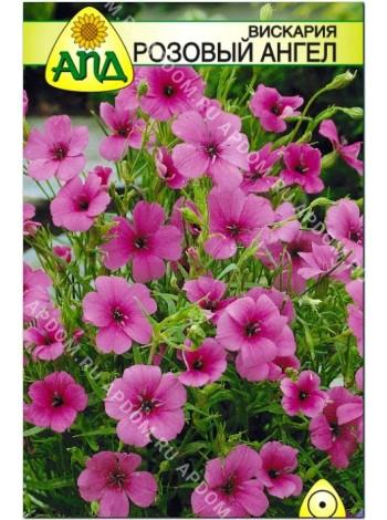 Вискария Розовый Ангел (Viscaria oculata)